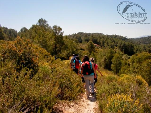 grup de gent caminant per un camí de muntanya