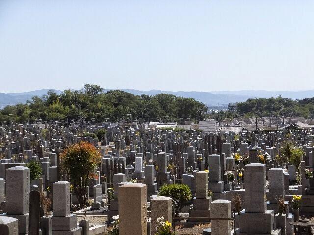 左、五塚原古墳、右、向日神社のある元稲荷古墳などが見えた。