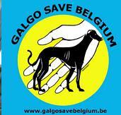 GALGO SAVE BELGIUM