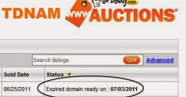buy and sell domain names guide