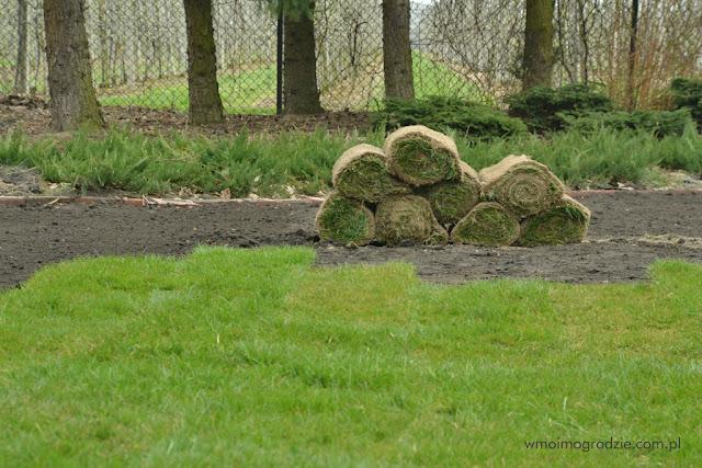 firma zakladajaca trawniki grójec