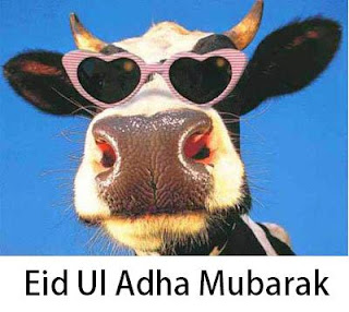 Eid Al Adha Nicefun Net Wish You Happy Eid Ul Azha Everyone Cows