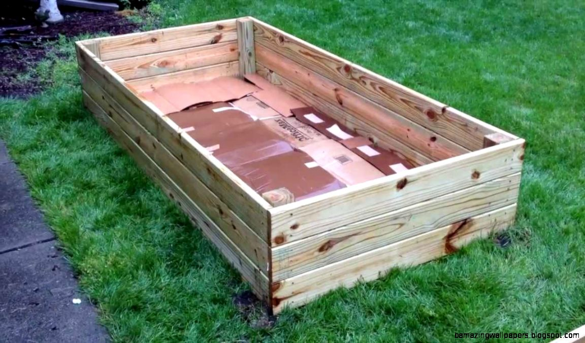 Easy  Affordable Backyard Raised Beds   YouTube