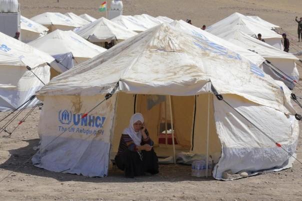 Lebih daripada 20,000 pelarian Syria menyeberang ke Iraq