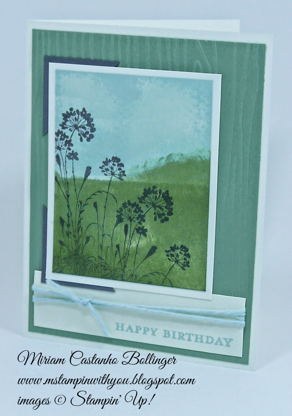 Miriam Castanho Bollinger, #mstampinwithyou, stampin up, demonstrator, ccmc352, serene silhouettes, painted blossoms cotton twine, morning meadow, scenery, masculine card, birthday card, su