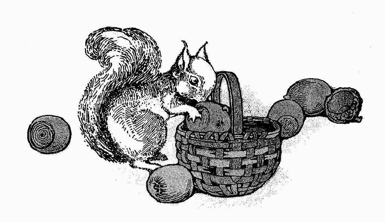 http://3.bp.blogspot.com/-EPuEjbR0evU/U1wR-jPE8xI/AAAAAAAATto/H5TI5d-PvLY/s1600/squirrel_basket_acorns.jpg