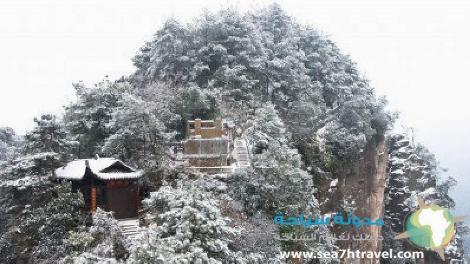 حديقة تشانغجياجيه الوطنية في الصين