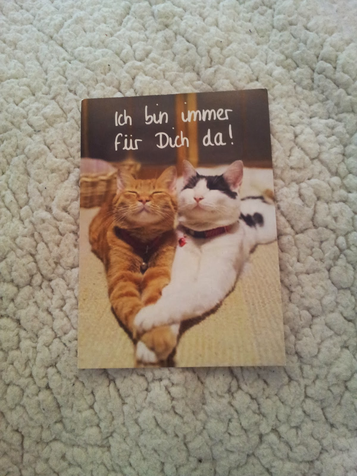 carte-postale-postcrossing-cartes-chats