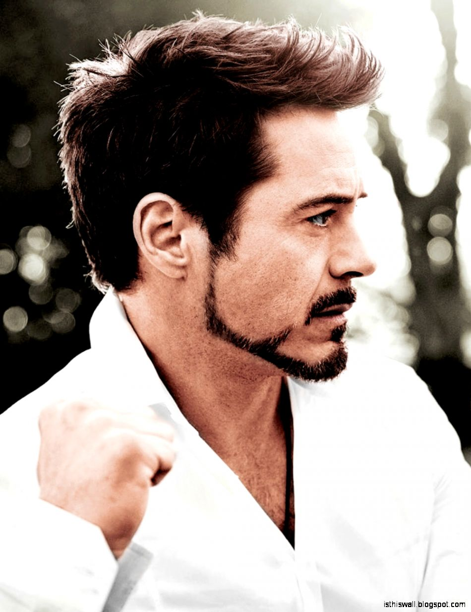 Robert Downey Jr   Iron Man Wiki   Wikia