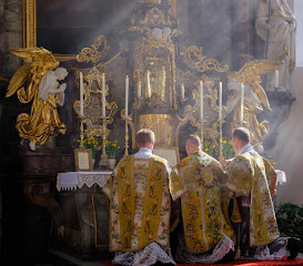 VELIKA RAZLIKA između katoličke Tradicionalne Mise i Nove (novus ordo) Mise... (klikni na sličicu)