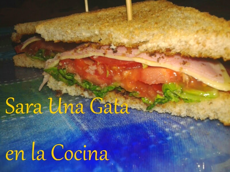 Sandwich Vegetal Integral