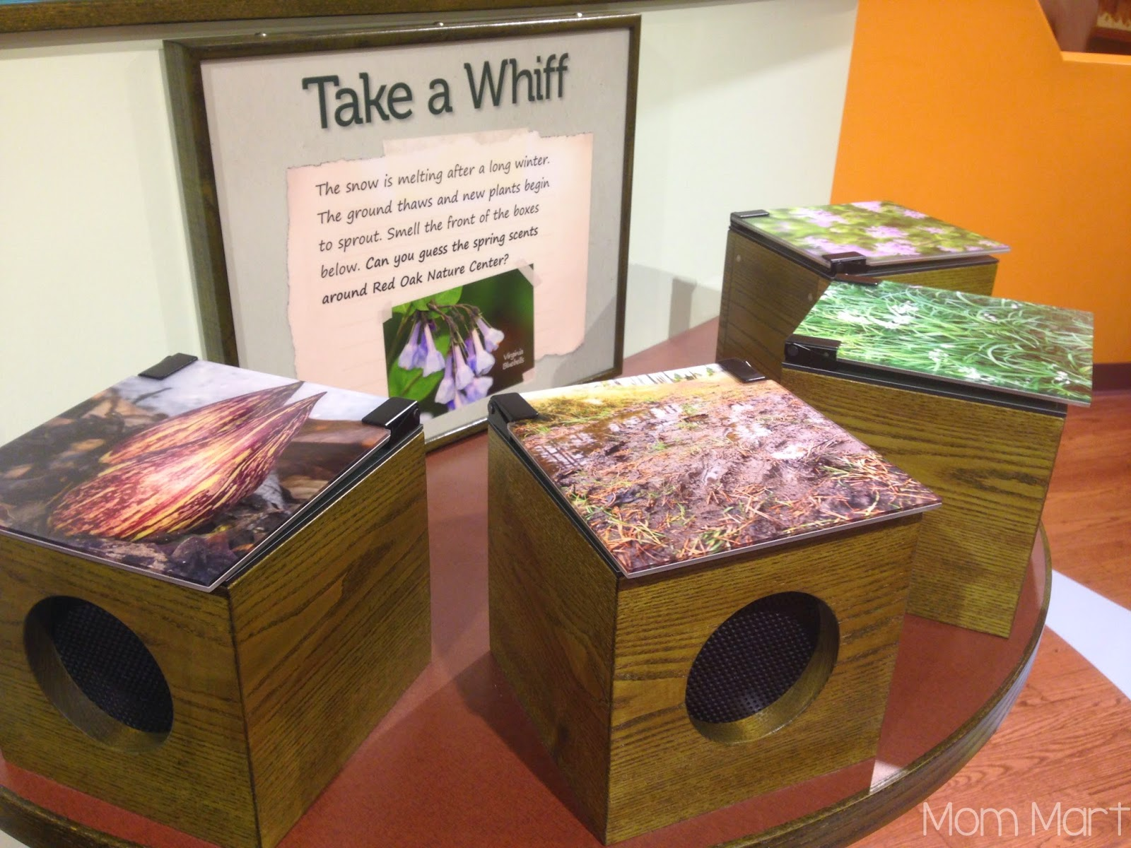 Fun and Free in Illinois: Red Oak Nature Center #Play
