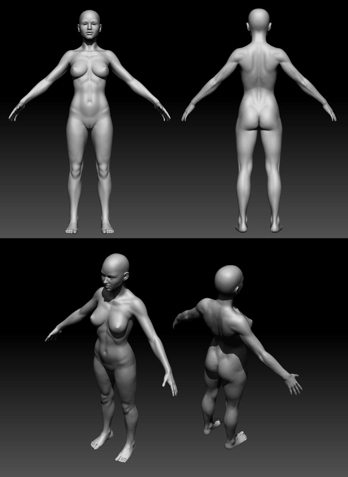 body_renders.jpg