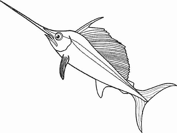Blue Shark Coloring Pages