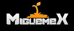 El blog de miguemex