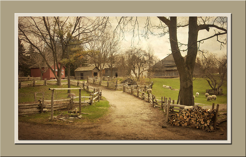 View from veranda of Stong second house at Black Creek Pioneer Village