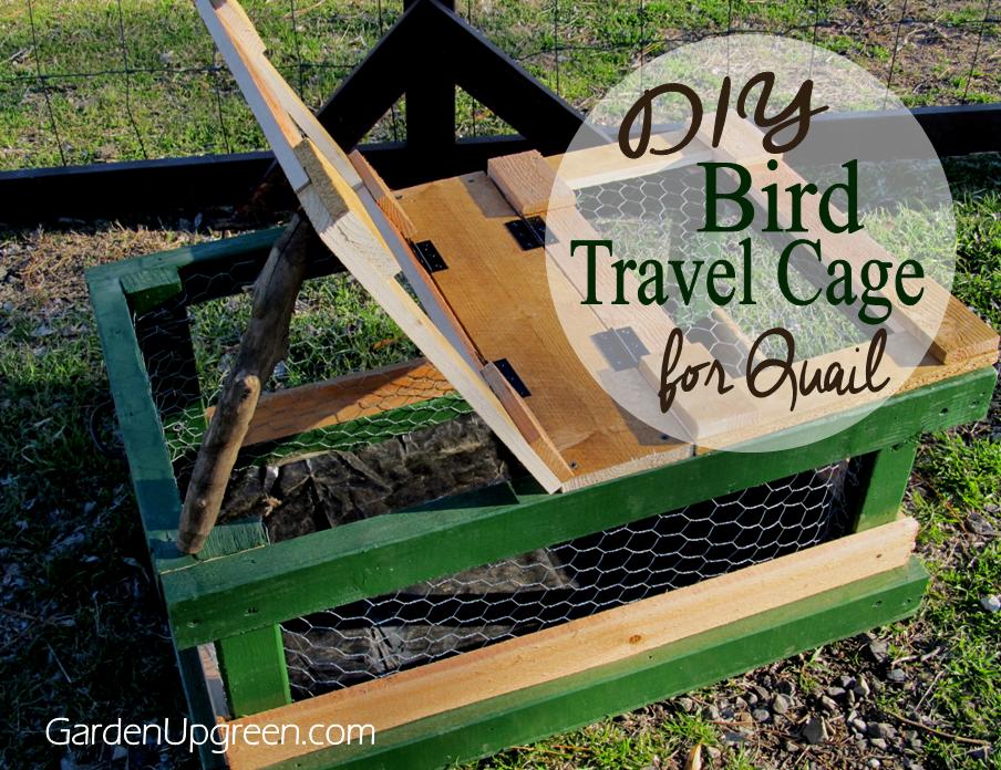 http://www.gardenupgreen.com/2015/02/diy-animal-travel-cage.html