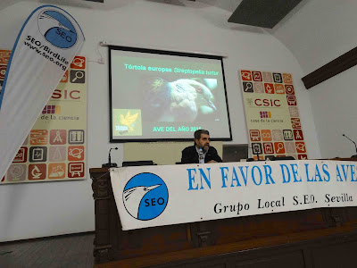 Conferencia 2 de Febrero 2016: Problemática de conservación de la Tórtola europea. Grupo Local SEO-Sevilla