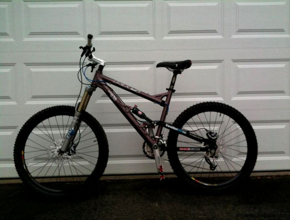 200 Dollar Mountain Bike