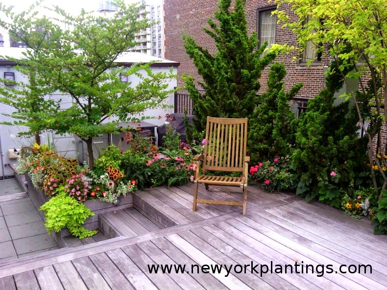 Manhattan Rooftop Gardeners New York Plantings Garden