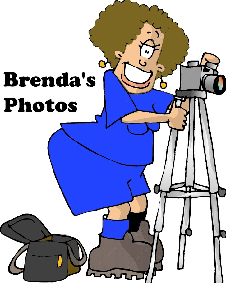 Brenda's Photo Blog