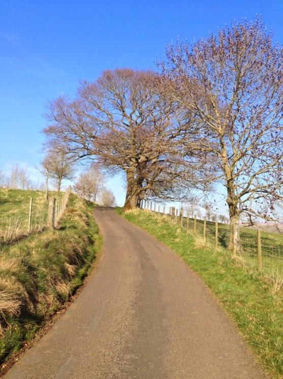 northumberland hamlet