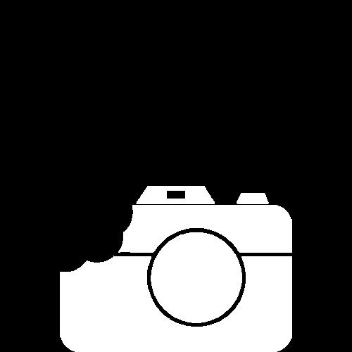 Tasty Pixel logo
