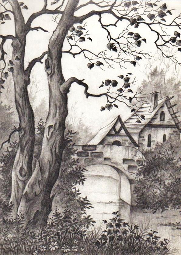 lazos de arte y amistad  dibujo a l u00c1piz  puente y bosque