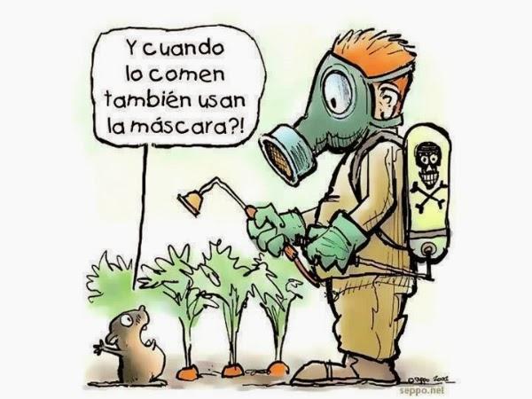 Pesticidas y plaguicidas for Casa del insecticida