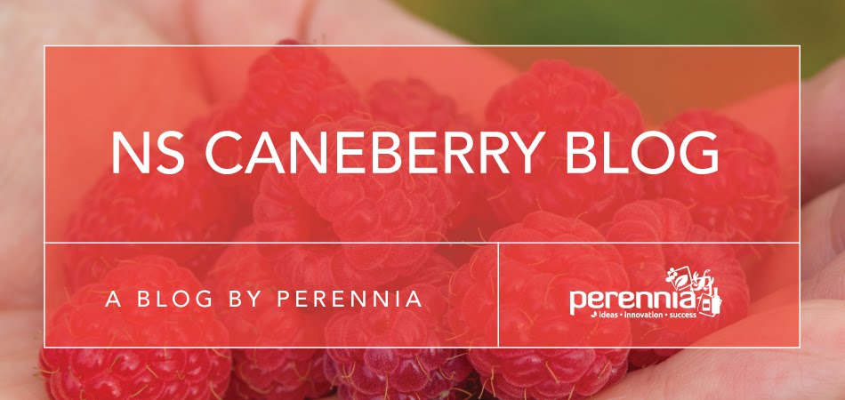 Nova Scotia Caneberry Blog