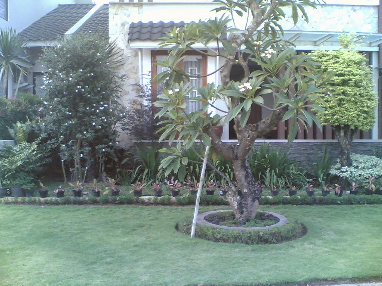 Jasa pembuatan taman | tanaman hias | rumput