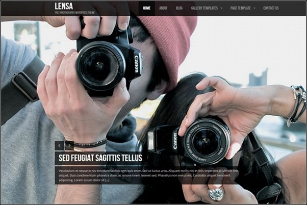 Lensa Theme Wordpress Terbaik