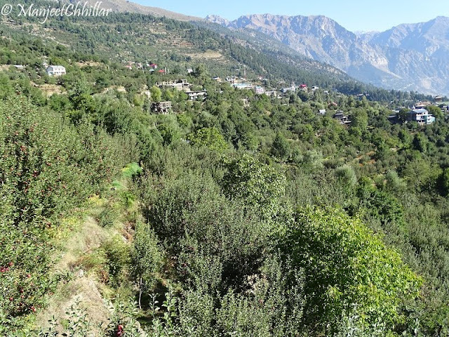 View Of Kalpa, Himachal