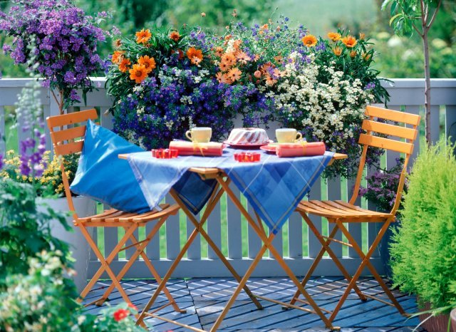 Spring Inspiration Patio garden designs for apartment and backyard!