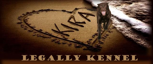 Legally Kennel Eng