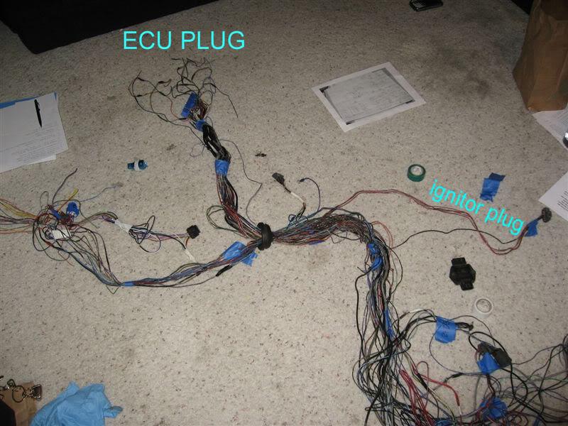 Wiring an S13 SR20DET up for an S14 9598 – Ka24de Swap Wiring Harness