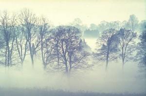 Asap atau Kabut Tebal