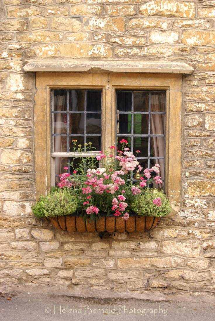 Hydrangea Hill Cottage Windowboxes