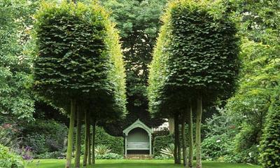 Landscape Design 2011-1