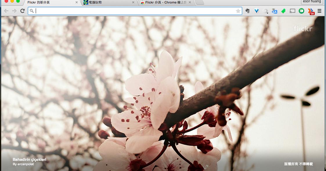 打開這個世界上最獨一無二的風景: Flickr 照片新分頁