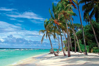 The-White-Caribbean-beaches-Barbados