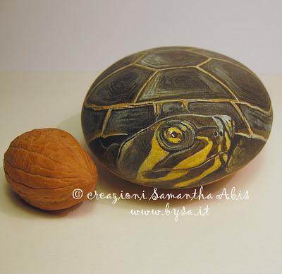 Ritratti di animali bysa tartarughe d 39 acqua dolce for Prezzo tartarughe
