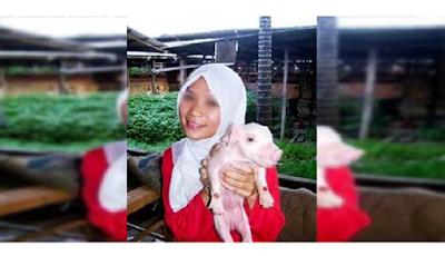 Wanita Berhijab Ini Pegang Babi