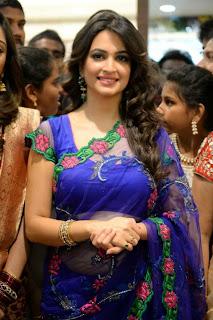 Kriti Kharbanda in Transparent Saree and Purple Sleeveless Blouse Stunning Beauty