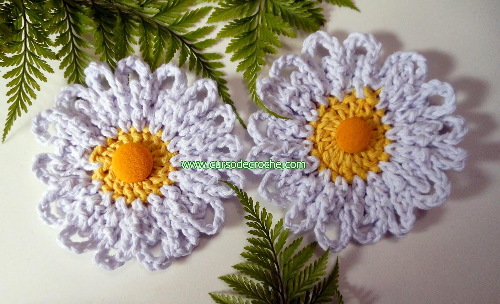 dvd flores 5 volumes com Edinir-Croche na loja curso de croche com frete gratis