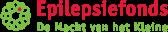 Epilepsie Fonds