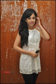 Priya Banerjee Pictures at Kiss Movie Teaser Trailer Launch Event  0049.jpg