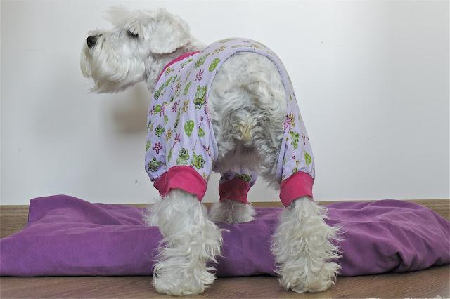 look pijama schnauzer