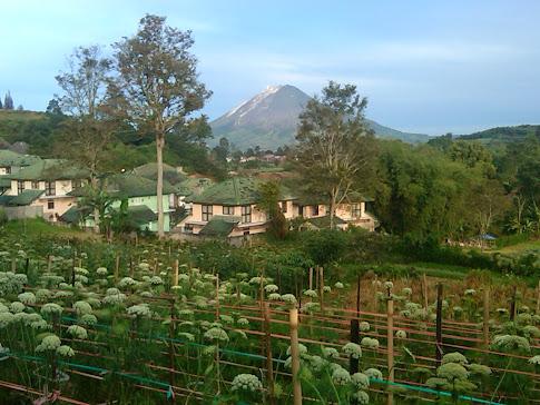 Dari Bukit Gundaling, Berastagi.