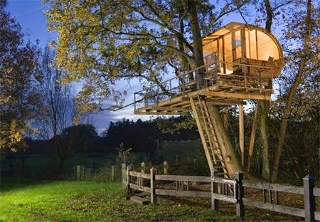 Baumraum Tree House [lensaglobe.com]